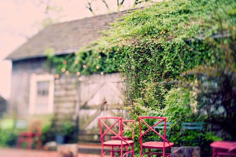 livingwall.TerrainatStyers.AlisaTonggCelebrant.JoyeusePhotography