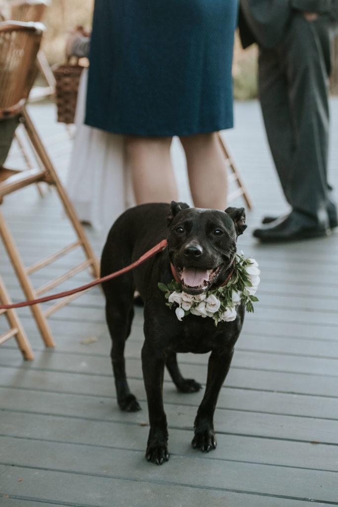 Hollie Sam wedding color098