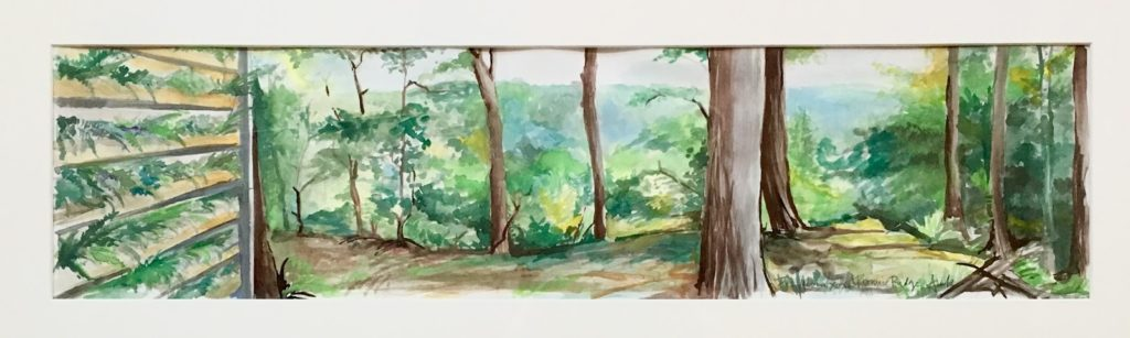 The Living Wall at Promise Ridge original painting by Heather Arak