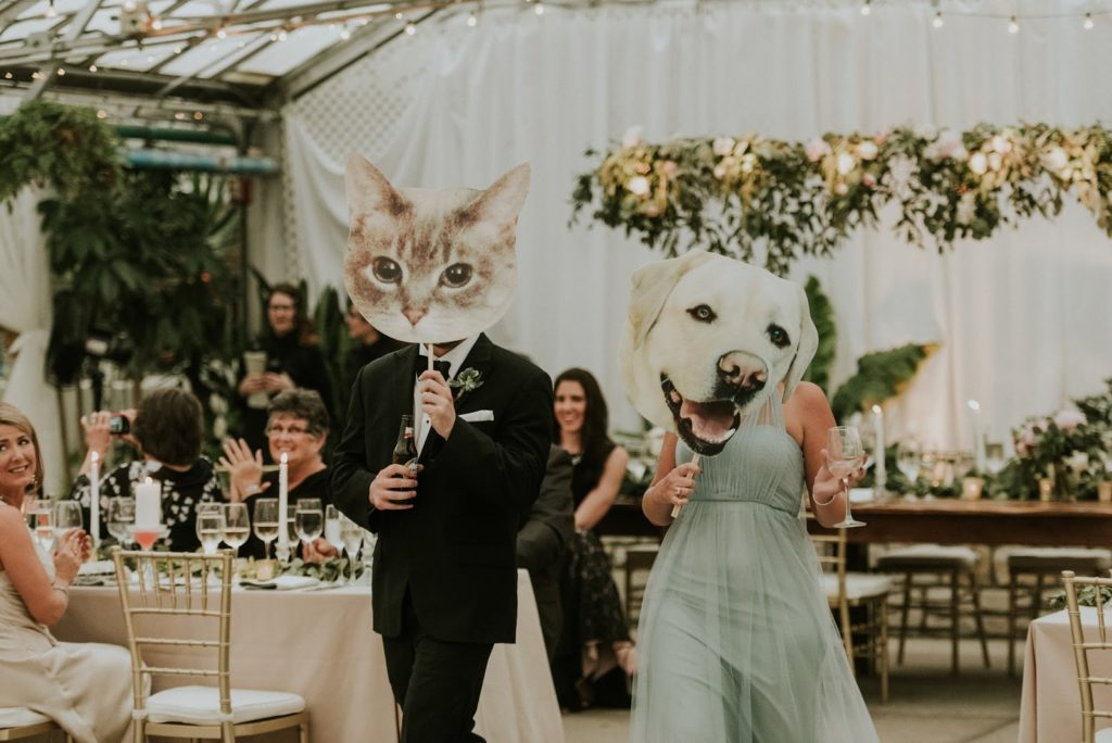kitty and puppy alisa tongg celebrant horticultural center wedding m2 photography
